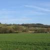 Lye Meadows