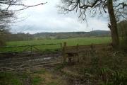 Farmland near Ashridge Copse