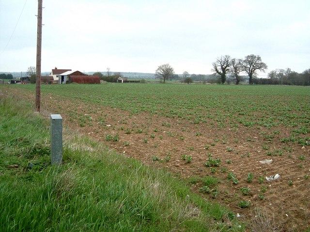Folly Farm Fields, Flitwick