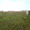 Rough pasture at Drumclog