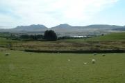 Farmland near Trawsfynydd