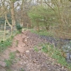 Below Little Pell Farm, Wadhurst