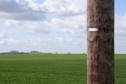 Farmland, Drayton St Leonard