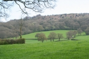 West Buckland: towards Gortnell Common