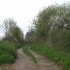 Track to Pitt Farm