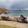 Wreck, Talmine Bay