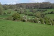 Farmland below Whiteshill