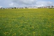 Whiteshill village
