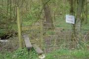 Wood along Sheep Bridge Brook