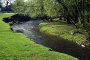 River Bollin, nr. Prestbury