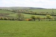 Martinhoe: towards Woolhanger Common