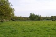 Chobham Park Farm