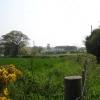 Farmland Nr Pebsham East Sussex