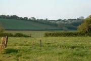 Auberrow Fields