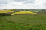 View to Callard Farm