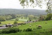 Bampton: above Quartley Farm