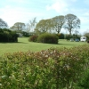 Caravan Site, Monckton Wyld