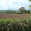 View across the Axe Valley