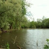 Matching Pond, Matching, Essex