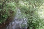 The Bourne, river near Woodham