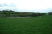 Farmland near Capel Garmon