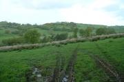 Farmland near Capel Siloam