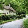Broadhembury: cottage near Stafford Barton