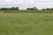 Boormans Farm, Hadlow