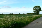 Farmland between Bursea Grange and Bursea Lodge Farms
