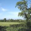 View near Gittisham