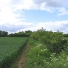 Linking Footpath, Canon's Green
