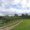 The Essex Way near Miller's Green
