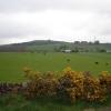 Fields near Memus