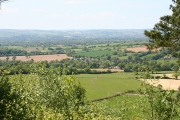 Broadhembury: towards the village