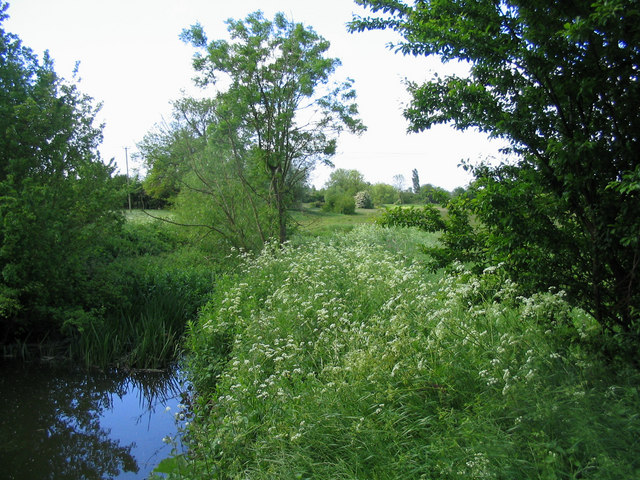 River Roding - near Miller's Green