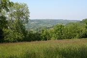 Hemyock: near Crockers Farm