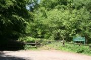 Kentisbeare: Forestry Commission, Blackborough