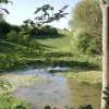 Pond at bottom of dry valley