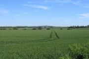 Farmland near Armscote