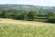 Tiverton: near Little Gornhay