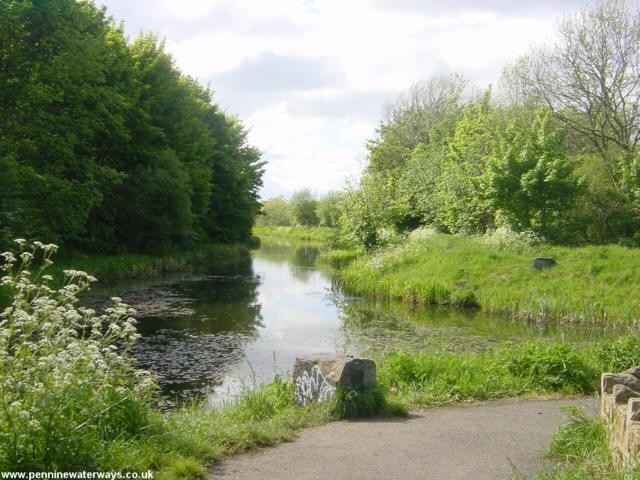 The Barnsley Canal near Barnsley