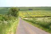 Farmland near Tathwell
