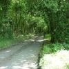 Hurstwood Lane