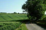 The road to Frith