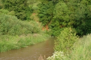 River Otter below Burnthouse Farm