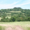 Combe Raleigh: towards Dumpdon Hill