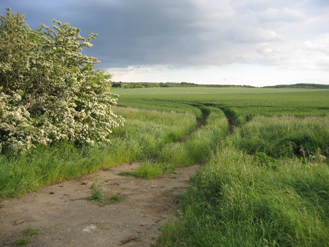 Farmland from Chapel End Road, Houghton Conquest, Beds