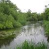 River Colne near West Drayton