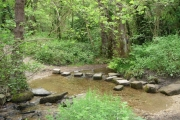 Stepping Stones Over Tributary of Oldhay Brook