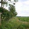 Footpath to Rede Wood